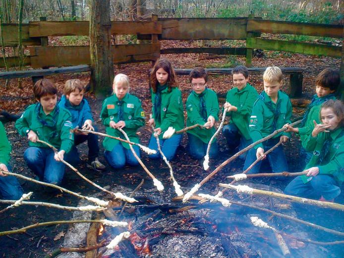 Welpen van scouting Malden in actie rond het kampvuur.