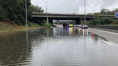 Aanhoudende regen zorgt voor wateroverlast: Antwerpse Ring staat blank, brandweer voert tal van interventies uit in Wallonië zonder ernstige incidenten