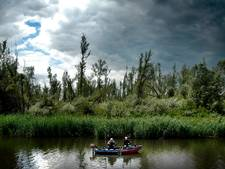 'Sportvissers willen ons wegjagen uit Biesbosch