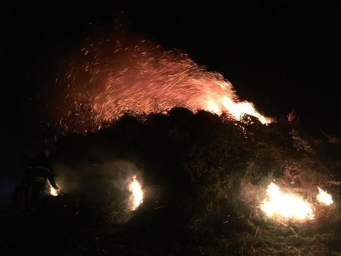 Al snel slaan de vlammen uit de stapel kerstbomen tijdens de verbranding daarvan in Riel.