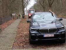 Boom valt op peperdure BMW in Amersfoort en verwoest voorruit