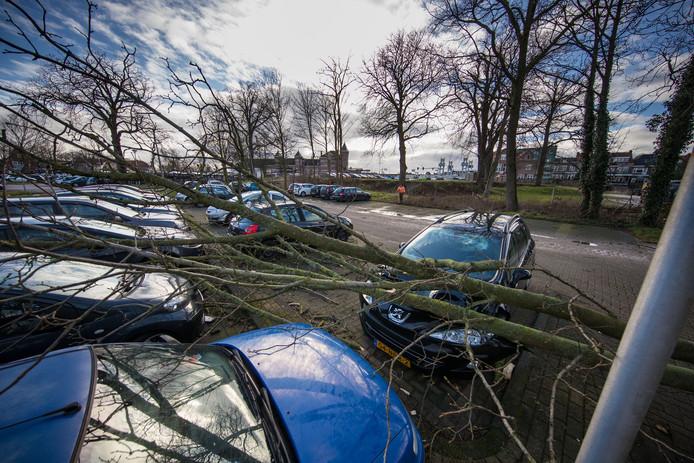 Storm in Nederland in januari 2018. Door de storm waaide meerdere bomen om rond het Stationsplein in Kampen. Bij een boom raakte vijf auto's beschadigd.
