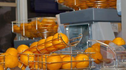 Open Vld wil winkeliers bevrijden van administratieve rompslomp van de fruitpers