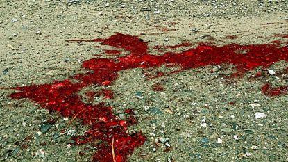 Klacht van GAIA na mishandeling stier