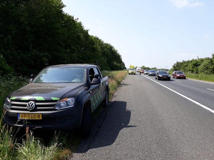 Ter hoogte van hectometerpaal 72,3 zijn vanochtend minimaal drie edelherten snelweg A6 opgerend.