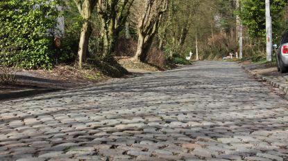 Virtueel racen tegen echte flandriens kan dankzij de Flandrien Challenge van Toerisme Oost-Vlaanderen binnenkort ook in Ronse