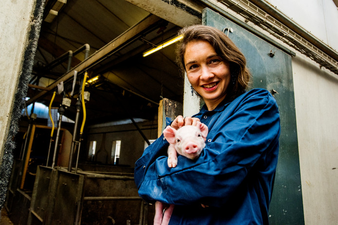 Anne-Marie Spierings bij een bezoek aan een biologische varkenshouderij in Herpt.