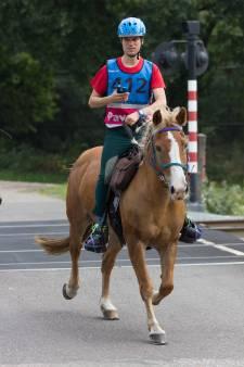 Driedaagse paardenmarathon Someren nu ook met menners