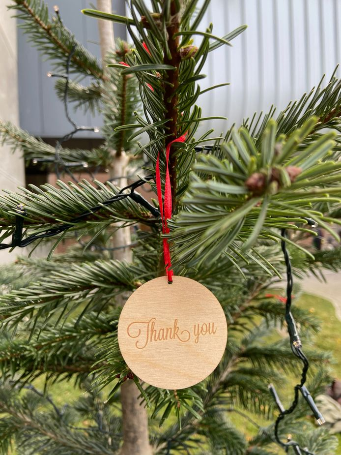 Versierde kerstbomen voor het UZ Gent.