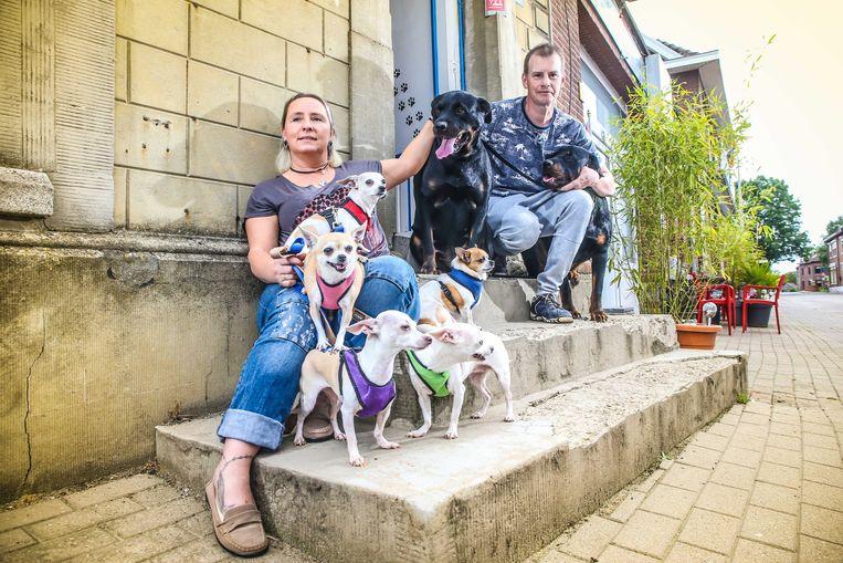 Dorpstraat Eigen Bilsen bij Diana & Mark en hun 7 honden *** Eigen Bilsen, Belgie - 15/06/2019 Photo by Pieter-Jan Vanstockstraeten / Photonews ***