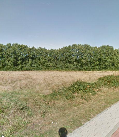 Plan voor woontoren in natuurgebied, Naarders en Huizers schrikken zich rot