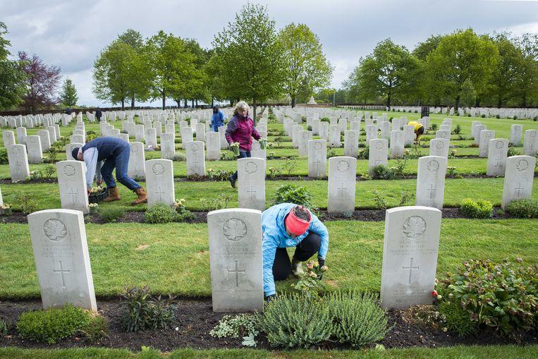 Tulpen sieren de Canadese begraafplaats in Groesbeek. Bij alle 2.619 witte kruisen staan er tulpen omdat er geen Dodenherdenking kan plaatsvinden wegens het coronavirus. Beeld ANP