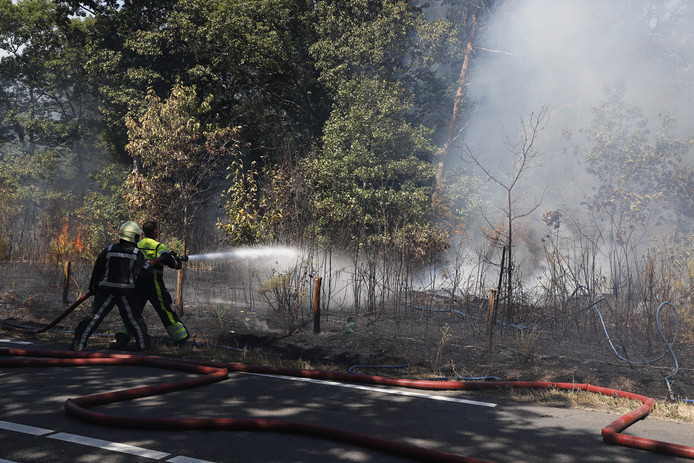 De brand in de bossen van Mill.