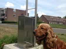 D66 Heusden wil hondentoiletten met aansluiting op de riolering