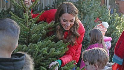 "IN BEELD. Kate Middleton tussen de kerstbomen: ""Die van ons staat al, hoor"""