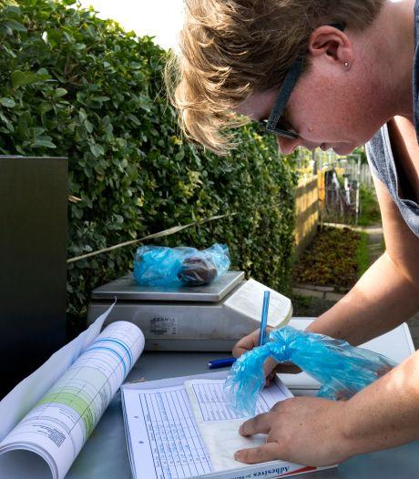 PFAS-stoffen in moestuingewassen Helmond toch minder onschuldig?