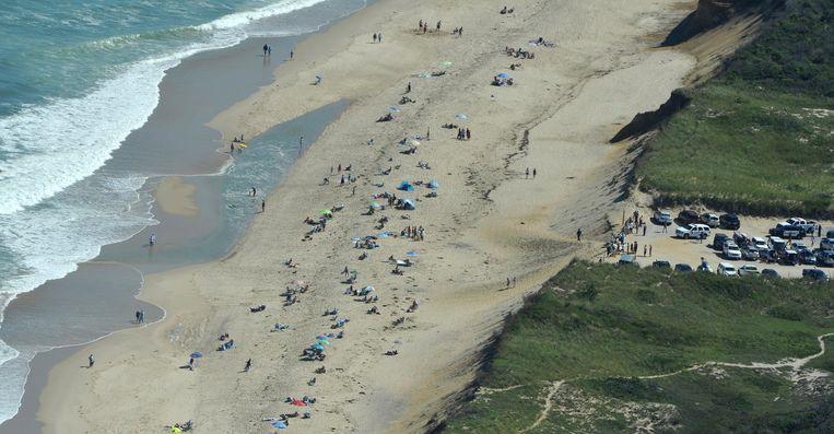 Arthur Medici werd aangevallen op Newcomb Hollow Beach in Wellfleet.