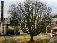 Breda kan ruim 800 woningen versneld bouwen