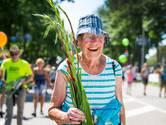 Vierdaagse Nijmegen populairste evenement van Nederland