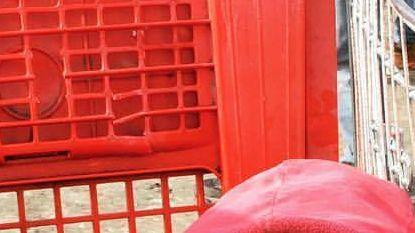 Mawda stierf wellicht door politiekogel in haar wang