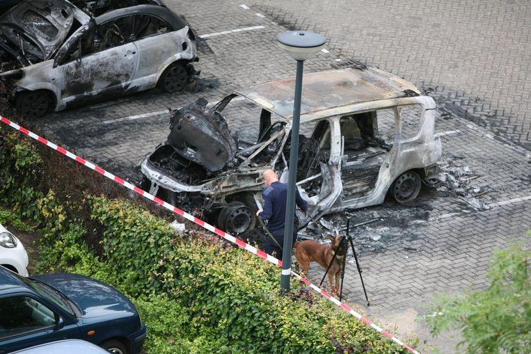 In juni 2011 wordt in Waalwijk een uitgebrande auto gevonden. De eigenaar is doodgeschoten gevonden in zijn woning in Sint Maartensdijk. Beeld anp