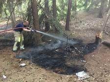 Brandweer uren bezig met blussen natuurbrand De Bilt