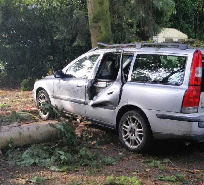 De boom kwam op de auto terecht