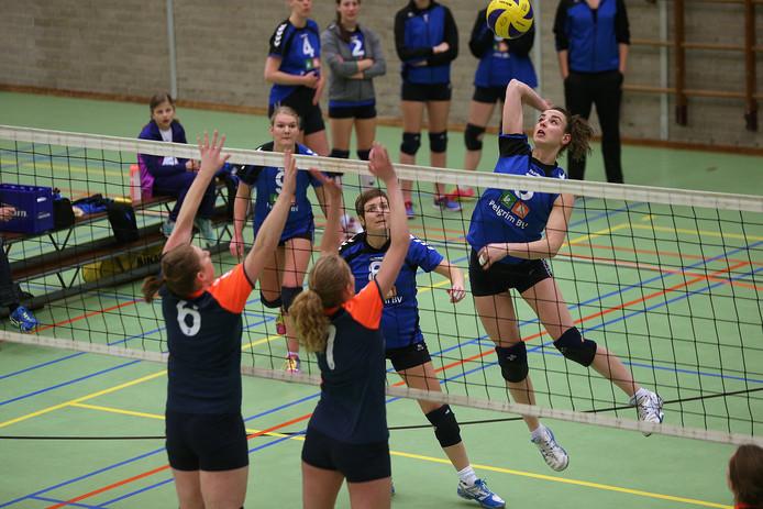 De volleybalsters van Wevoc hebben de eerste overwinning op zak. Archieffoto Theo Kock