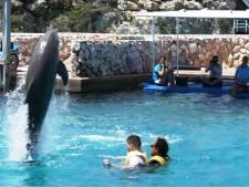 Dolfijnen Chabelita en Nubia leren Niels (21) communiceren