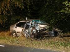Auto rijdt door stuk bos en komt tegen boom tot stilstand in Sint Anthonis, bestuurder gewond
