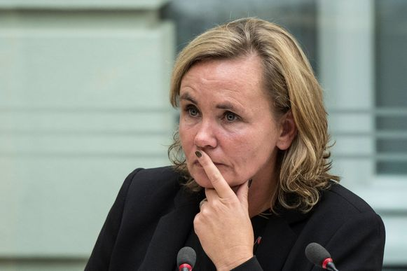 Vlaams minister van Binnenlands Bestuur Liesbeth Homans (N-VA)