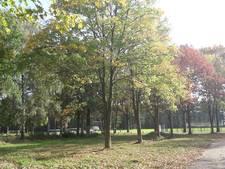 Oude pijplijn Riethoven krijgt andere plek