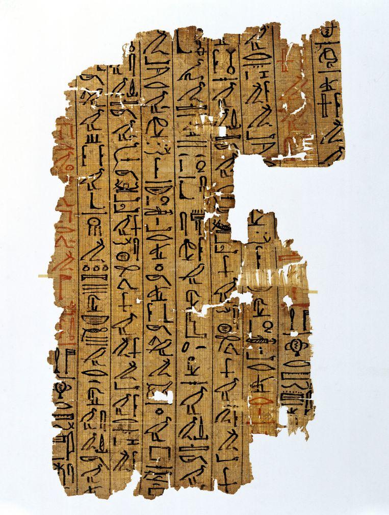 Fragment van het Egyptisch Dodenboek, een verzameling op papyrus geschreven teksten die aan doden werden meegegeven. Beeld SSPL via Getty Images
