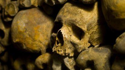 Hoofd van 800 jaar oude mummie gestolen in Ierland