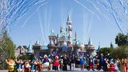Kaart Disneyland levert ruim 600.000 euro op