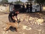 Turks NFI onderzoekt bloedspoor in gebied waar Joey (21) verdween