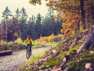 De mooiste routes én tips om (veilig) te fietsen in Vlaanderen