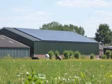 Zonnecollectief Lopikerwaard wint prijs voor 'beste energie-initiatief' van Utrecht