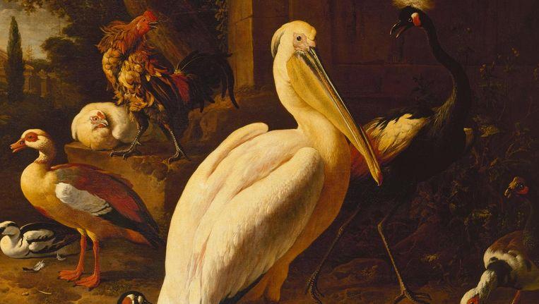 Melchior de Hondecoeter, Vogels in een park, 1686. Beeld Hermitage, St Petersburg