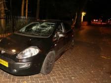 Dronken automobilist (27) uit Tiel aangehouden in Vught in beschadigde auto