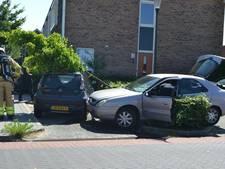 Auto in Elst ramt heg, verkeersbord en geparkeerde auto