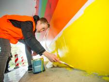 Scholieren uit Lochem gaan met verfkwasten graffiti in 'saaie tunnel' te lijf