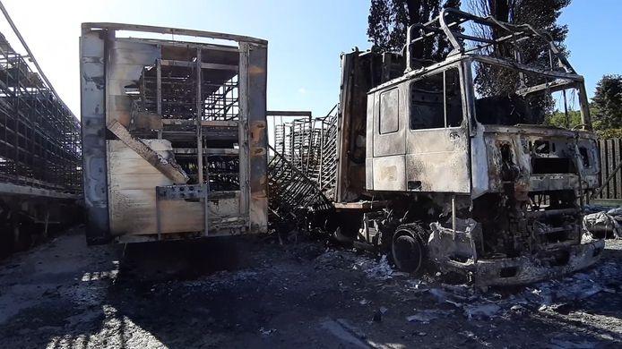 Vijf vrachtwagens en twee opleggers brandden uit bij Tomassen Duck-To.