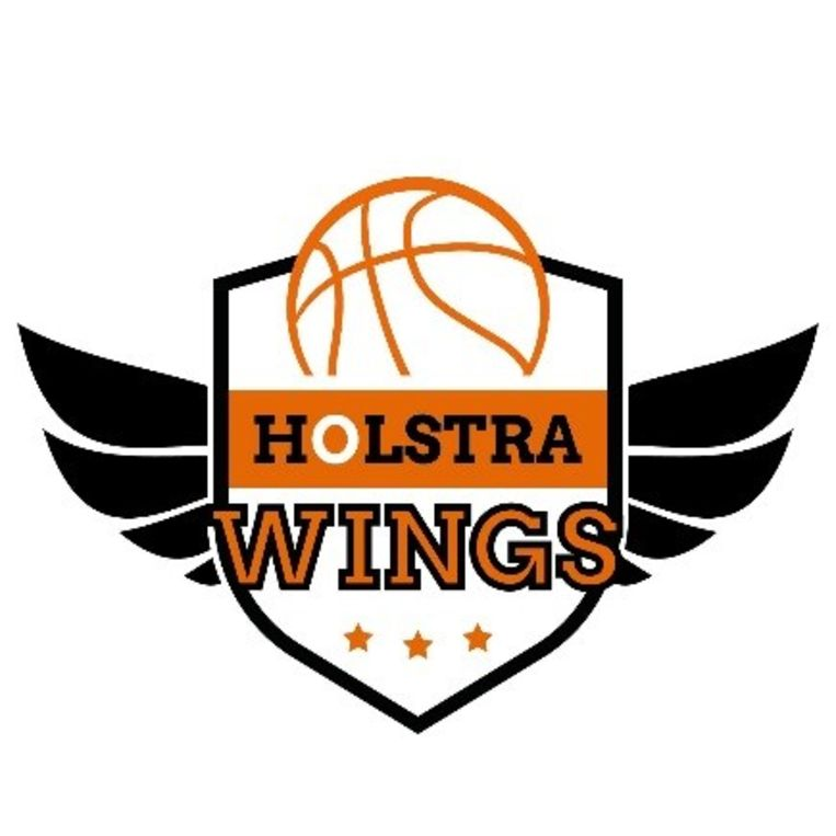 Nieuw logo Holstra Wings