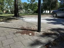 Bewoner flat Apeldoorn aangehouden voor brandstichting auto; verband met bloempotgooier nog onduidelijk