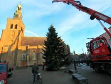 Happy end voor zoektocht naar grote kerstboom in centrum Etten-Leur
