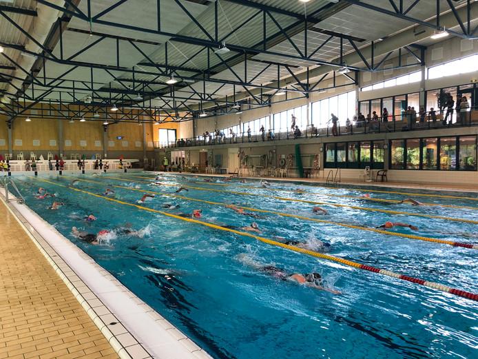Zoals gebruikelijk was zwemmen één van de drie pijlers.