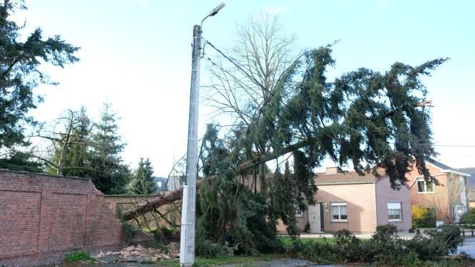 Herstelling van door storm beschadigde pastorijmuur start eind deze maand