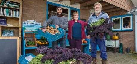 Einde aan biodynamische groentetas uit Punthorst