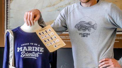 Schaf een T-shirt aan en help de zee